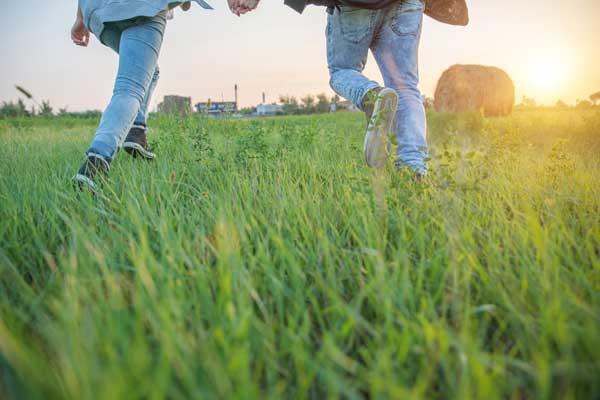 טיול לפסח – שומרים על רחובות ירוקה
