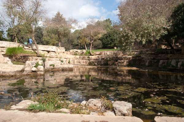 גן לאומי עין חמד
