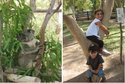 גן גורו - טיול בשבת עם הילדים