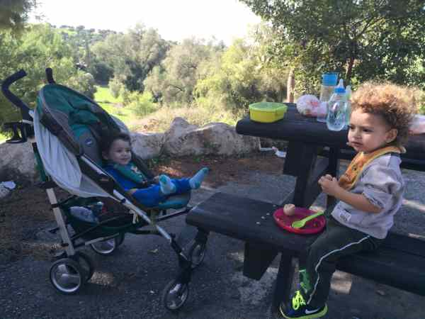 יער חרובית טיול עם הילדים