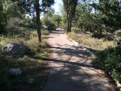 טיול ביער חרובית