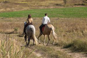 רכיבה מהנה על סוסים - טיול לשבת עם הילדים