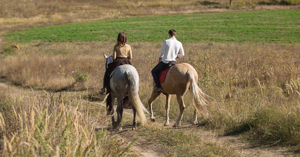 רכיבה על סוסים - טיול לשבת עם הילדים