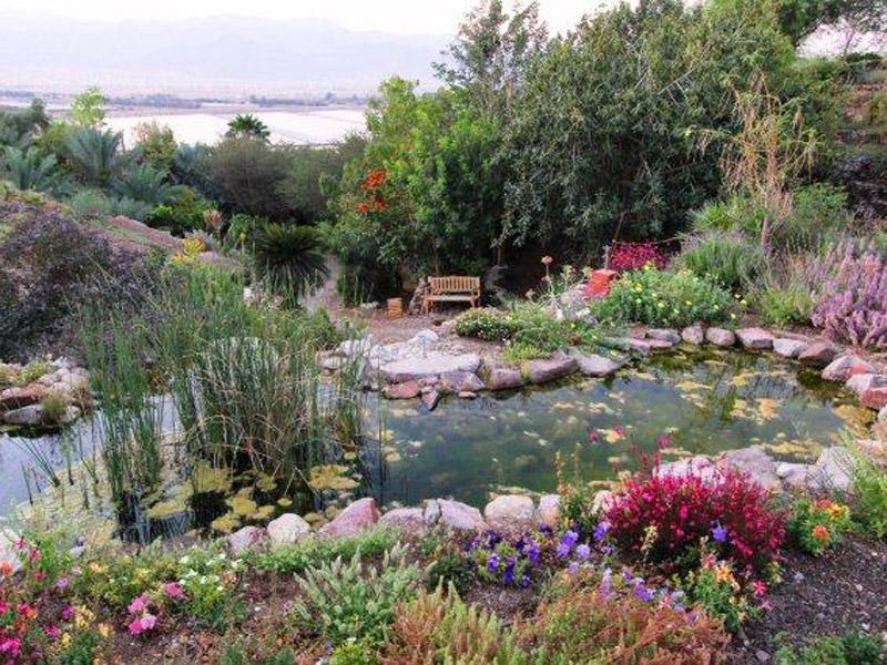 הגן הבוטני של אילת – פלא במדבר