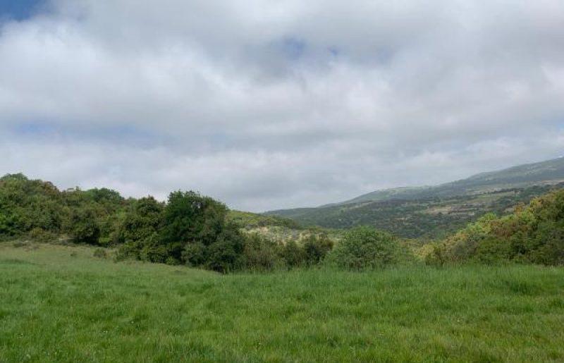 הר הלל והסביבה