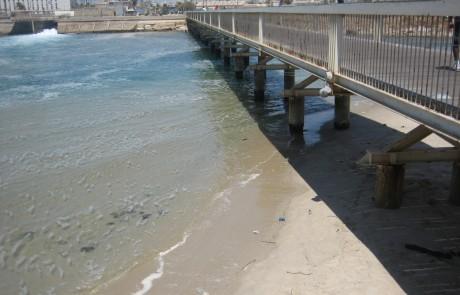 נמל תל אביב בשבת בבוקר