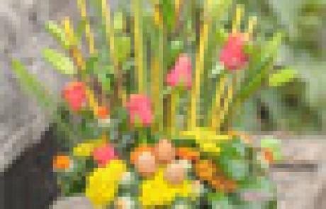 בוקטו – חנות פרחים אומנותית