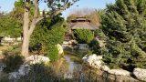הגן היפני בחולון - טיול בשבת עם הילדים
